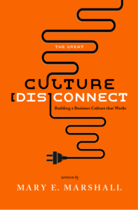 Culture disconnect book cover